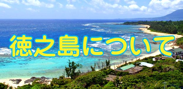 徳之島についてのイメージ